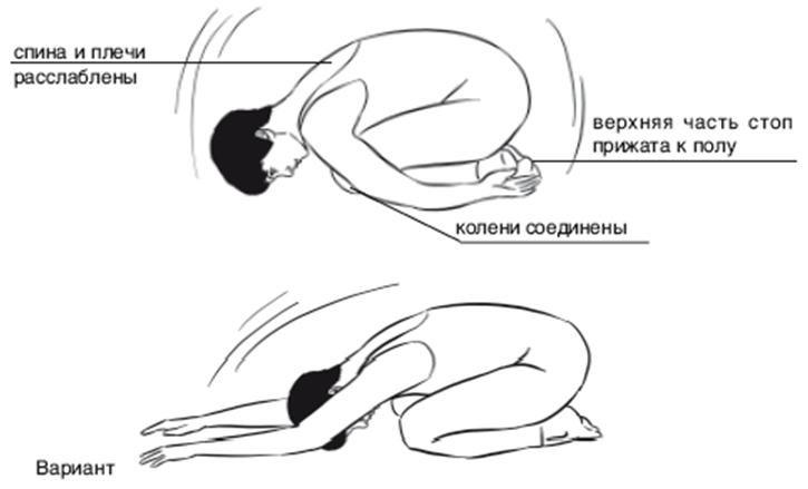 poza_embriona